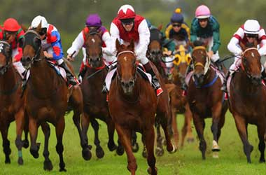 Best horse racing online betting sites central bank crypto currency news